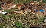 Descarte irregular de lixo em bairros causa transtornos em Uberaba