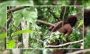 Único índio no Brasil que vive sozinho é da tribo Tanaru