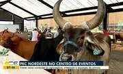 Evento reúne novidades do agronegócio, artesanato e exposição de animais.