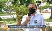 Número de denúncias recebidas pelo Conselho Tutelar aumenta durante pandemia