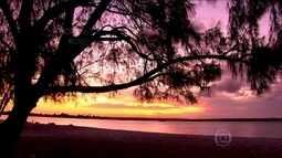 Ilha do Itamaracá (PE) tem águas calmas e o maior centro de preservação de peixe-boi