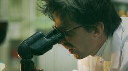 Veja o trailer do curta 'Toxic'