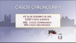 2º BLOCO   Conheça os sintomas e saiba como tratar a febre chikungunya