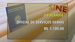 Confira as vagas disponibilizadas pelo Sine de Uberlândia nesta terça-feira