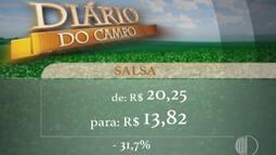 Cotação: Setor de verduras recuou 3,5% nesta semana, diz CEAGESP