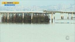 Mais duas áreas são liberadas na Grande Florianópolis para cultivo de moluscos