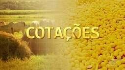 Vamos conferir os preços do mercado agropecuário