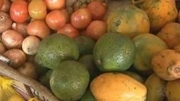 Segundo dados da ONU, cerca de 30% dos alimentos produzidos no Brasil vão para o lixo