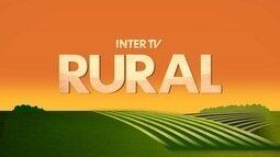 Confira os destaques do Inter TV Rural para este domingo (24)