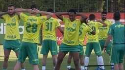 Palmeiras tira lições da derrota em casa e busca fora os pontos para manter liderança