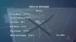 Índice de infestação por Aedes em Boa Vista sobe de 0,6% para 11,8%
