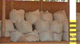 Plantio da soja começa em setembro e as vendas de insumos estão adiantadas