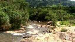 Série mostra problemas causados pelo desmatamento