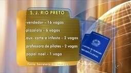 Balcão de Empregos oferece mais de 50 vagas de trabalho em Rio Preto