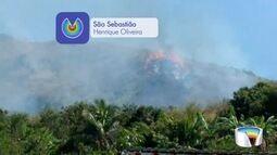Incêndio atingiu grande área verde do CTA