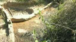 Órgãos ambientais descobrem contaminação em área de preservação permanente em Cachoeiro