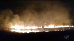 Incêndio às margens de rodovia mobiliza bombeiros em Marília