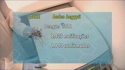Secretaria de Saúde mantém alerta contra proliferação do Aedes aegypti
