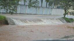 Chuva forte causa alagamento e derruba árvores em cidades da região