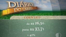 Preço de verduras no Alto Tietê teve reajustes na última semana