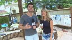 Jonas e Kelly são treinados pelo Tamar - parte 1