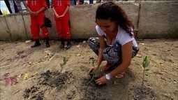Moradores da Ilha de Deus, no Recife, ensinam turistas a preservar o mangue da região