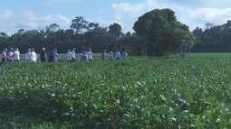 Produtores rurais participam do 'Tour da Soja'