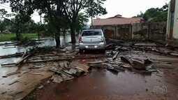 Chuva causa queda de árvores em Goiânia e estragos em Cristianópolis