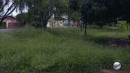 Moradores da Vila Virgínia, em Ribeirão Preto, reclamam de conservação de praça
