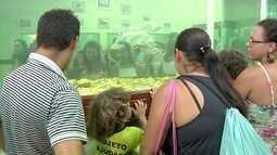 'Estação Ciência' é motivo de atração para turistas de São João da Barra, no RJ