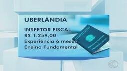 Sine Uberlândia disponibiliza vagas de emprego para esta segunda-feira (23)