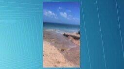 Esgoto na praia de Ponta Verde chama a atenção