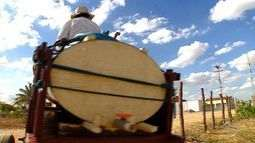 Saiba o que está sendo feito para combater a desertificação