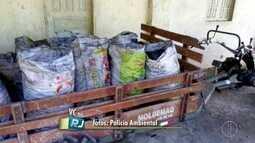 Polícia Ambiental apreende cerca de 250 sacos de carvão vegetal em Tamoios, Cabo Frio, RJ