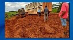 Região do Araguaia tem sido afetada por causa das chuvas
