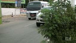 Árvores sem poda prejudicam visibilidade em avenidas e ruas da capital maranhense