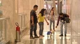 Para agradar clientes, shoppings em MS passam a permitir presença de pets