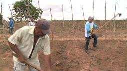 Na Zona Rual de Arapiraca, fiéis realizam tradicional procissão a cavalo