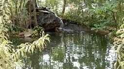 Dia Mundial da Água é marcado por ações de conscientização em Montes Claros