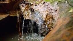 Nosso Campo fala sobre o cuidado com a água nas propriedades rurais