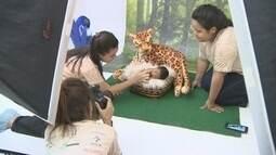 Ensaio fotográfico 'amazônico' registra primeiros dias de bebês no AM