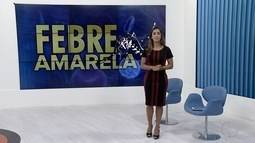 Prefeitura de São Fidelis, RJ, confirma febre amarela na cidade