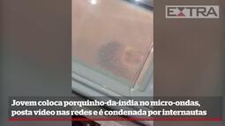 Jovem coloca porquinho-da-índia no micro-ondas e é condenada por internautas