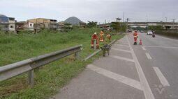 Concessionária instala grades em rodovia após mulher morrer ao bater em cavalo