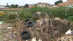 Aedes Aegypti: lixos e entulhos espalhados nas ruas preocupam os moradores de Feira