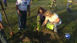 Árvores são plantadas no Parque da Cidade no aniversário da Rádio e TV Tapajós