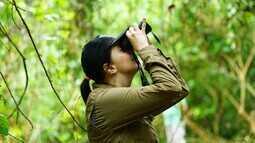 Observadores de aves se encontram em evento realizado em São Paulo (Bloco 03)