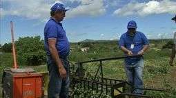 Agricultores preparam o feno para servir de alimento ao gado nos próximos meses