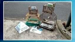 Homens são detidos por manter aves presas em caixas de remédios