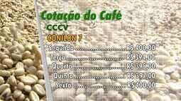 Cotação do café: preços não estão animadores para cafeicultores